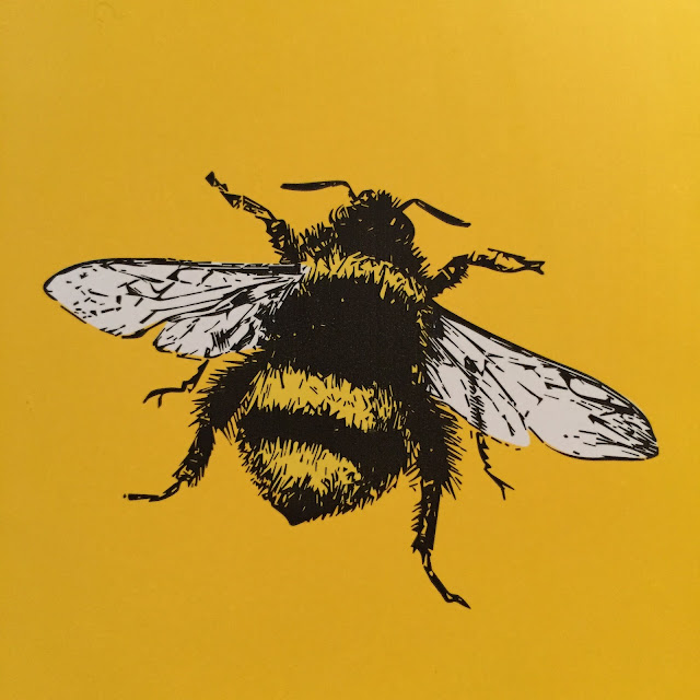 Willy Chase's FITCORN honey bee packaging