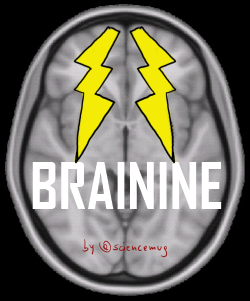 Brinine logo_by sciencemug