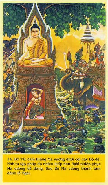 66. Kinh Ví dụ Con chim cáy - Kinh Trung Bộ - Đạo Phật Nguyên Thủy