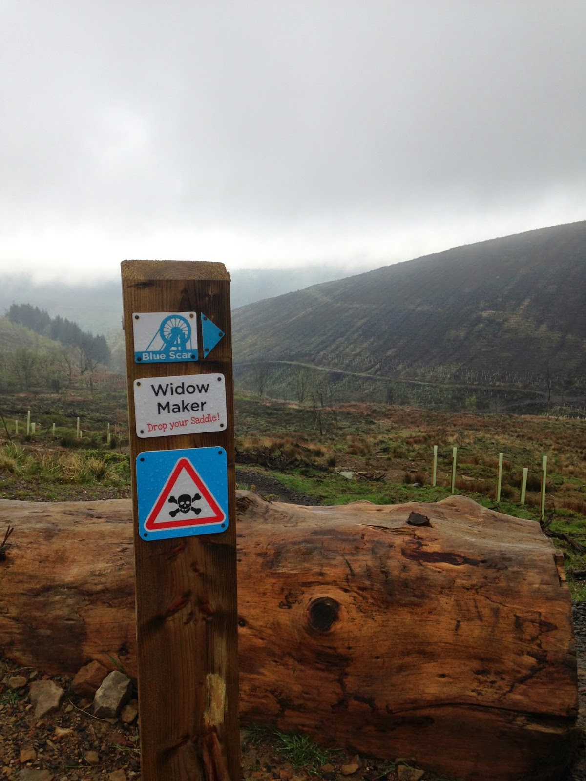 Afan Forest Park mountain biking - the Widow Maker