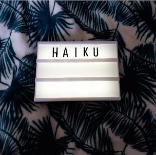 haiku, poetry, poems, creative writing, depression haiku, mental health haiku, haikus about depression, poems about depression, mental health poems, mental health poetry,