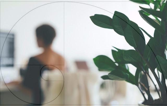 seccion-aurea-fotografia
