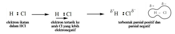 Polarisasi Ikatan Kovalen Menghasilkan Molekul Polar Dan Nonpolar Wanibesak