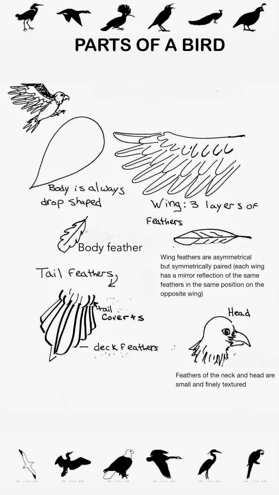the helpful art teacher draw a bird day steam in the middle school art room using science. Black Bedroom Furniture Sets. Home Design Ideas