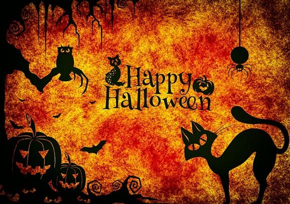 Non Festeggio Halloween.Frasi Divertenti Per Halloween Scuolissima Com
