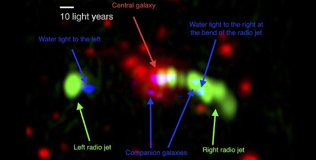 The Spiderweb Galaxy as seen by the Hubble Space Telescope (optical) in red, the Very Large Array (radio) in green and the Atacama Large Millimeter/submillimeter Array (sub-millimetre) in blue. The red colour shows where the stars are located within this system of galaxies. The radio jet is shown in green, and the position of the dust and water are seen in blue. The water is located to the left and right of the central galaxy. The water to the right is at the position where the radio jet bends down wards. The dust is also seen in blue. The dust is located at the central galaxy and in smaller companion galaxies in its surroundings. Credit: NASA/ESA/HST/STScI/NRAO/ESO/