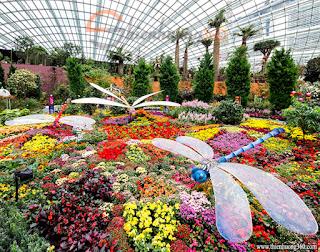 Flower Dome Singapore - Mái vòm hoa