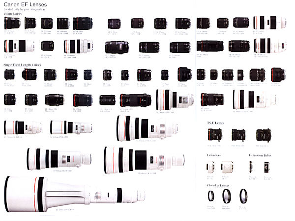 Choosing the right Cannon lenses for certain type of
