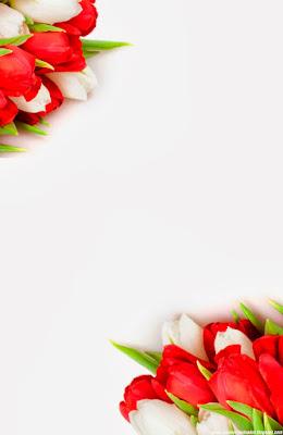 Invitación Elegante y Novedosa para Bodas Tulipanes Rojos y Blancos