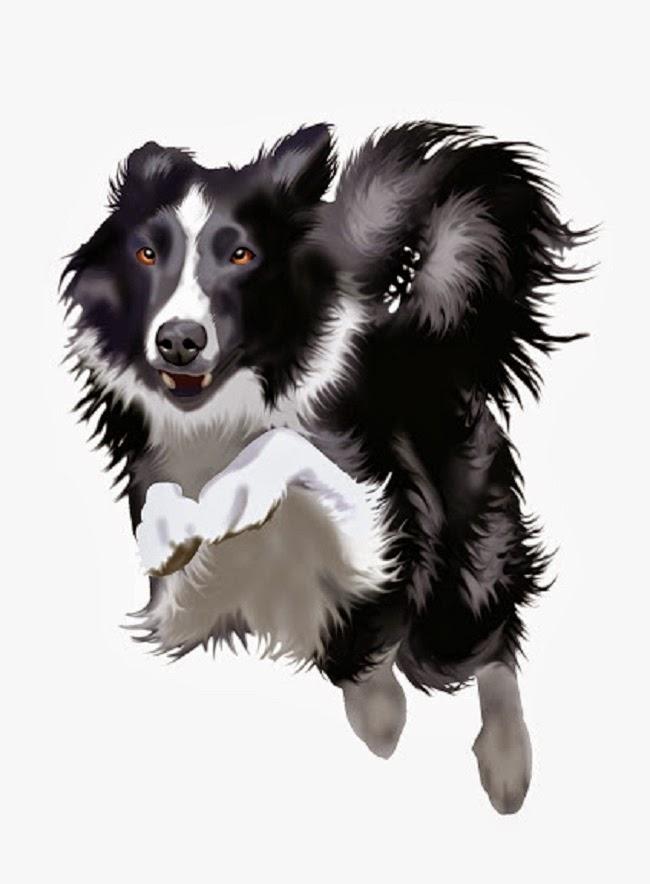 Psy w Księdze rekordów Guinessa