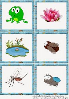 frog vocal for kids, flashcards