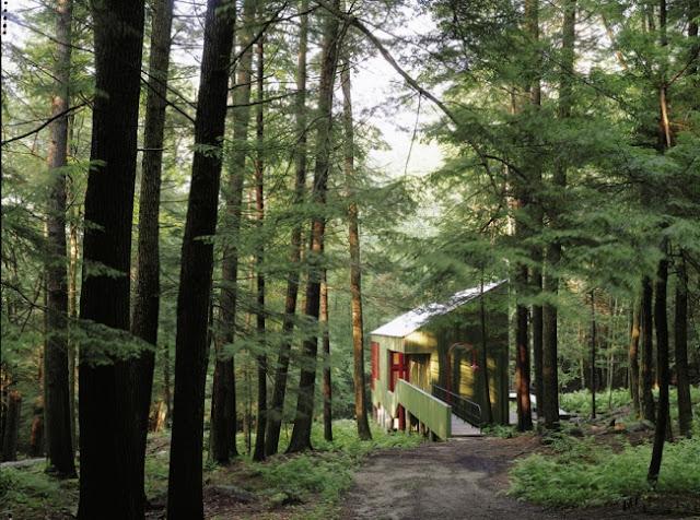 طبيعة لمنازل الغابات maison_forestire_con