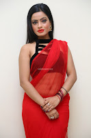 Aasma Syed in Red Saree Sleeveless Black Choli Spicy Pics ~  Exclusive Celebrities Galleries 073.jpg
