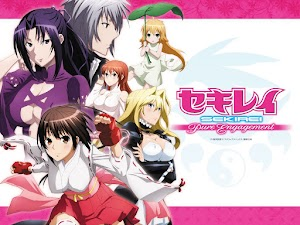 Sekirei Pure Engagement: Todos los Capítulos (13/13) + OVA (1/1) [MEGA] BD HDL