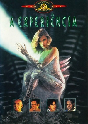 A Experiência - Blu-Ray Torrent Download