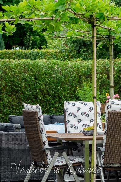 Lieblingsecke Outdoor : Dachplatanen als Überachung für die Terrasse