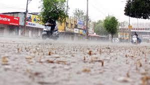 آندھراپردیش کے کئی اضلاع میں بھی شدید بارش