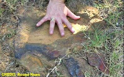 Dino Print Found By Ray Stanford at Goddard Space Flight Center Campus