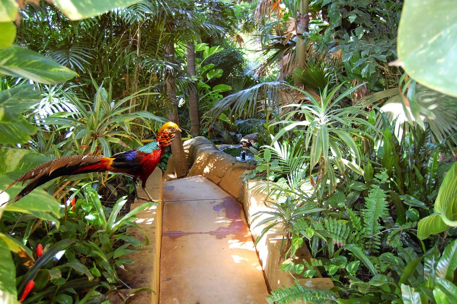 Ashmore Palms Holiday Village Blog