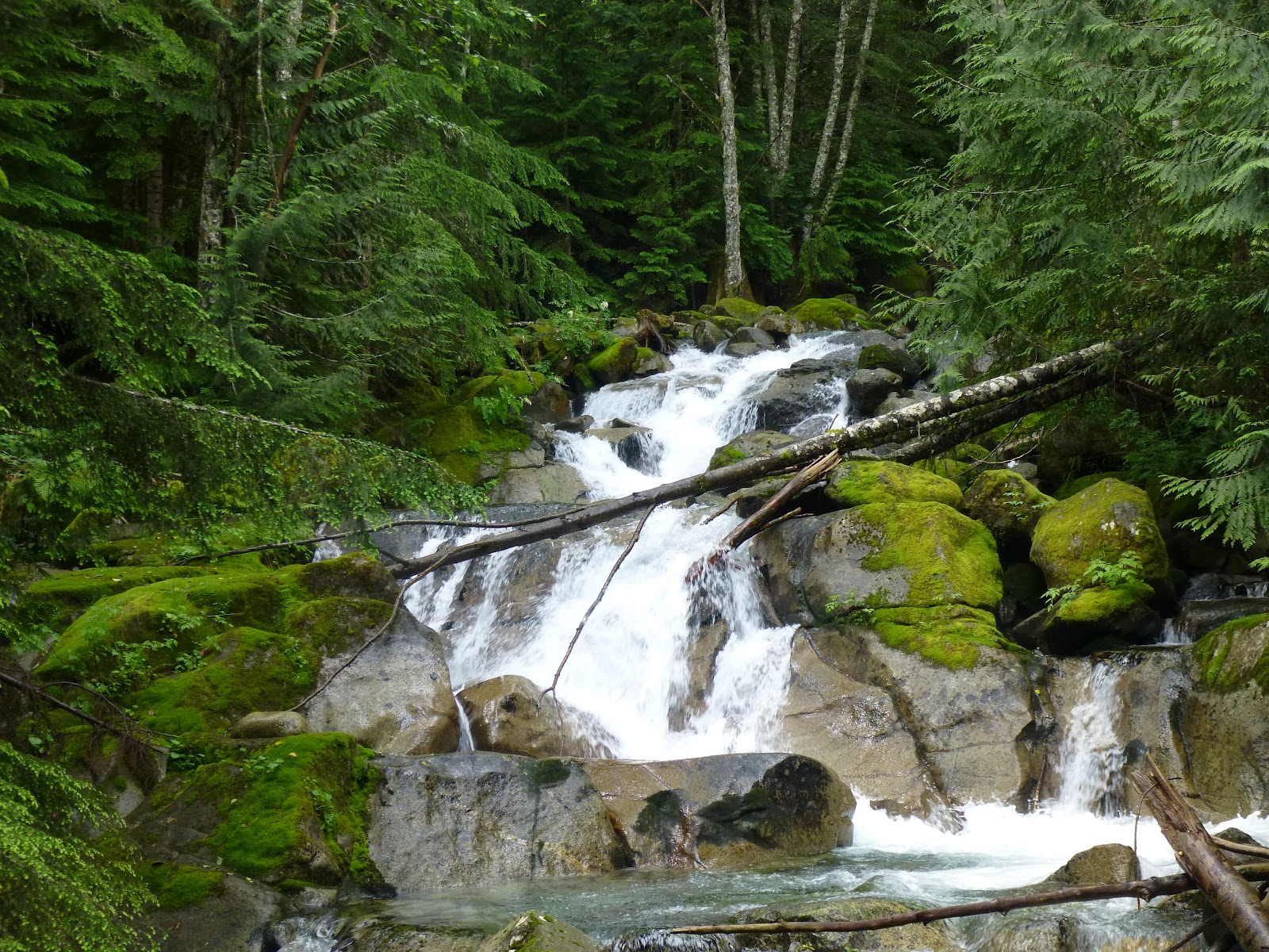 northwest pacific hiking places meet hike
