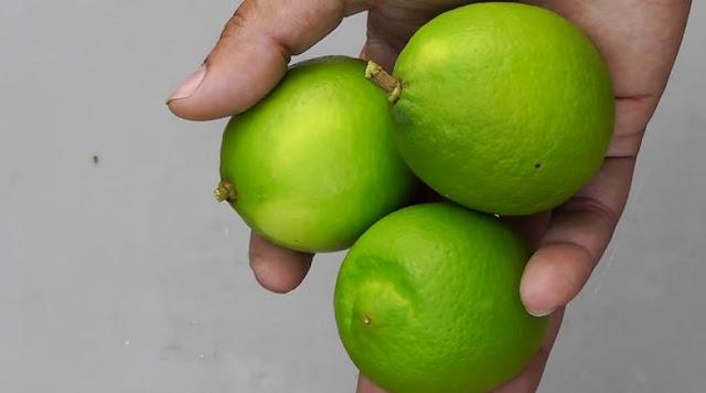 Manfaat Suntik Vitamin C di Tubuh & Kesehatan Kulit