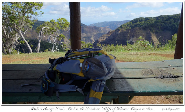 Alaka'i  Swamp Trail: Back to the Trailhead. Cliffs of Waimea Canyon in View.