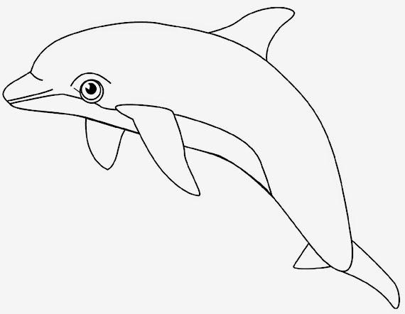 900+ Gambar Animasi Binatang Untuk Mewarnai Gratis Terbaru