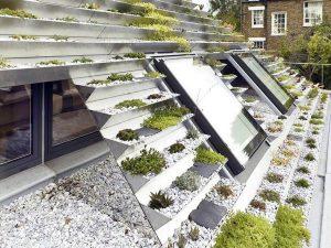 Garden In Rooftop 5
