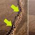 ¿Sabes qué son estos agujeros que hacían los persas en mitad del desierto?