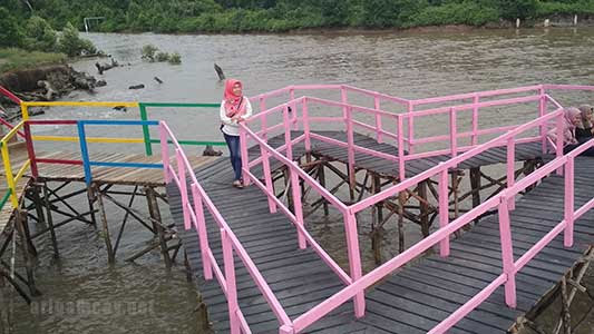 Cinta mangrove park desa bakau