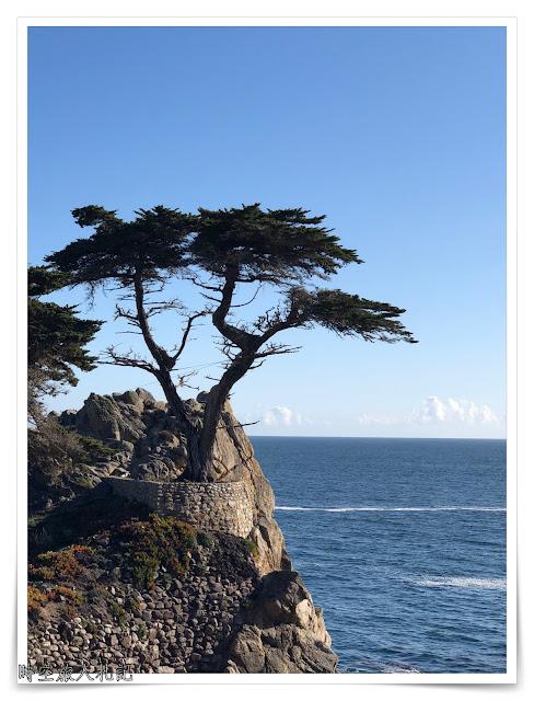 Monterey 17 miles drive 12