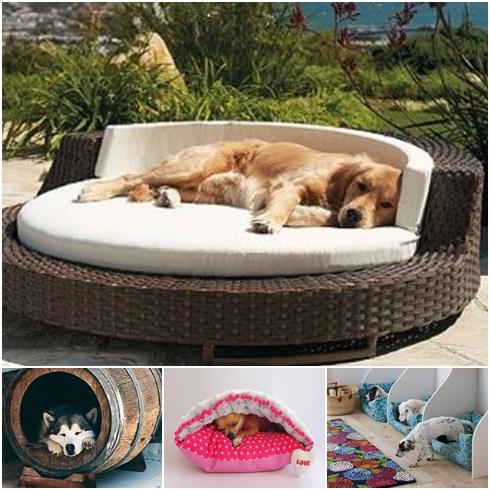 Luxus kutyaágyak
