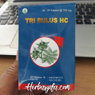TRIBULUS HC