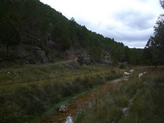 Arroyo de la Rambla