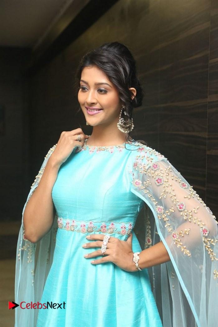 Dwaraka Telugu Movie Audio Launch .COM 0041.jpg