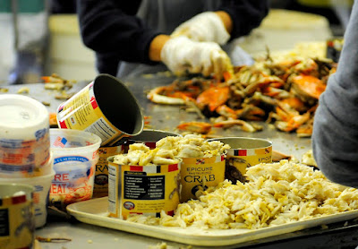 Crab Canning Supplier