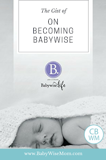 The Gist of Babywise