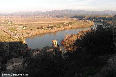 Riu Ebre vist des del castell