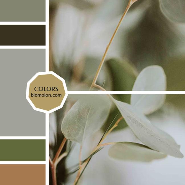 variedad_en_color_moodboard_28