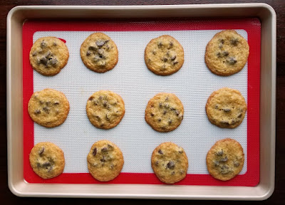 dozen baked chocolate chip cookies on baking sheet
