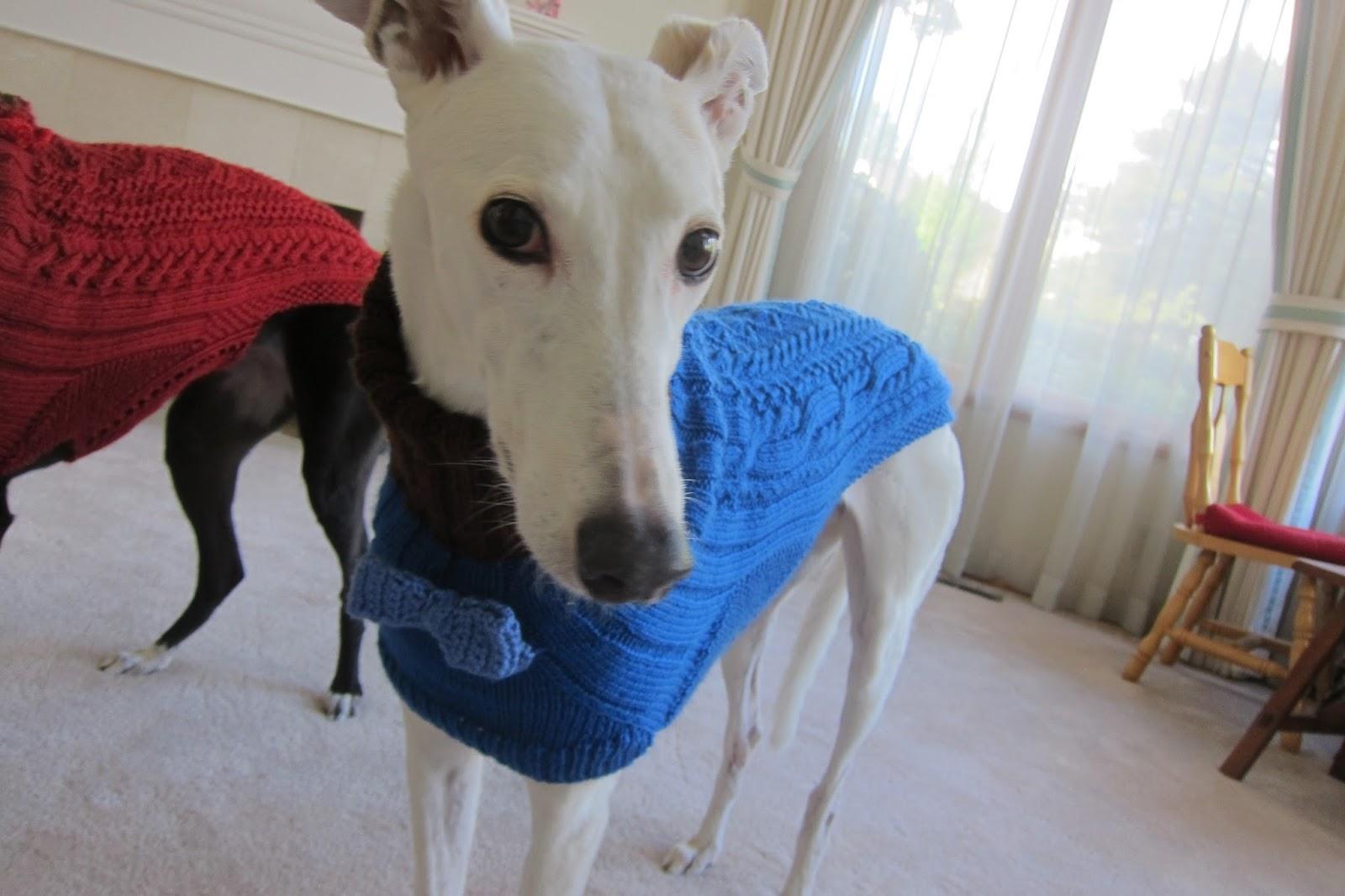 Greyhound Knit Sweaters Donation sweaters