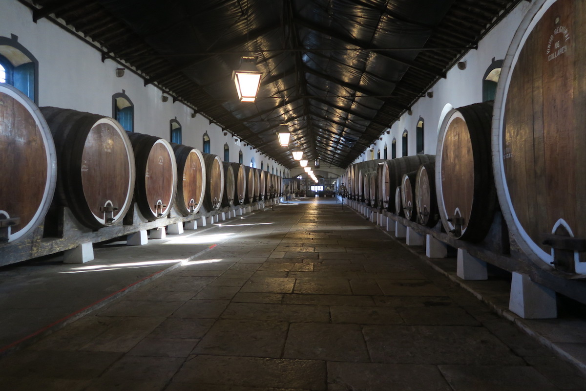 This displays Adega Regional de Colares, which is the Sintra winery.