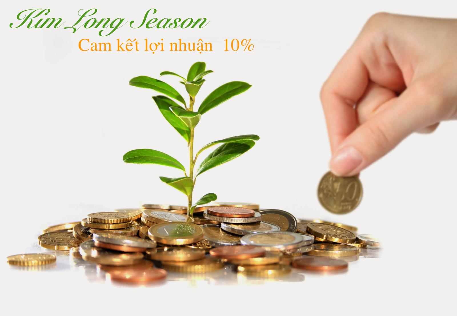 Kim Long Season cam kết lợi nhuận hấp dẫn cho khách hàng