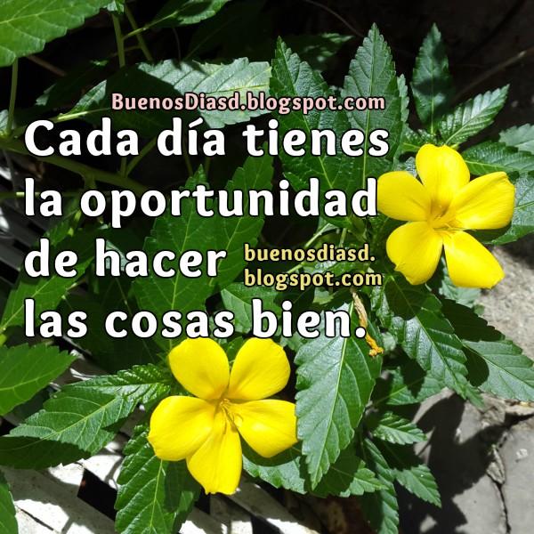 Frases de ánimo en este nuevo día, pensamientos de éxito, volver a empezar, oportunidades en este día, imagen con frases positivas por Mery Bracho