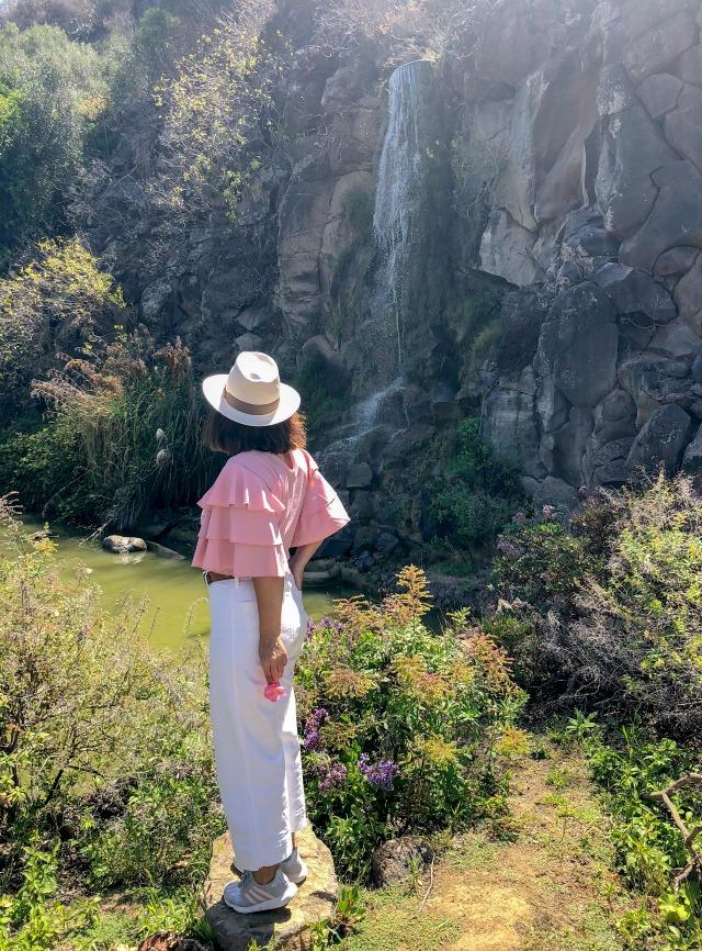 Gran_Canaria_jardín_botánico_viera_y_clavijo_01