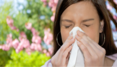 Coping With Your Allergies over the Christmas Period