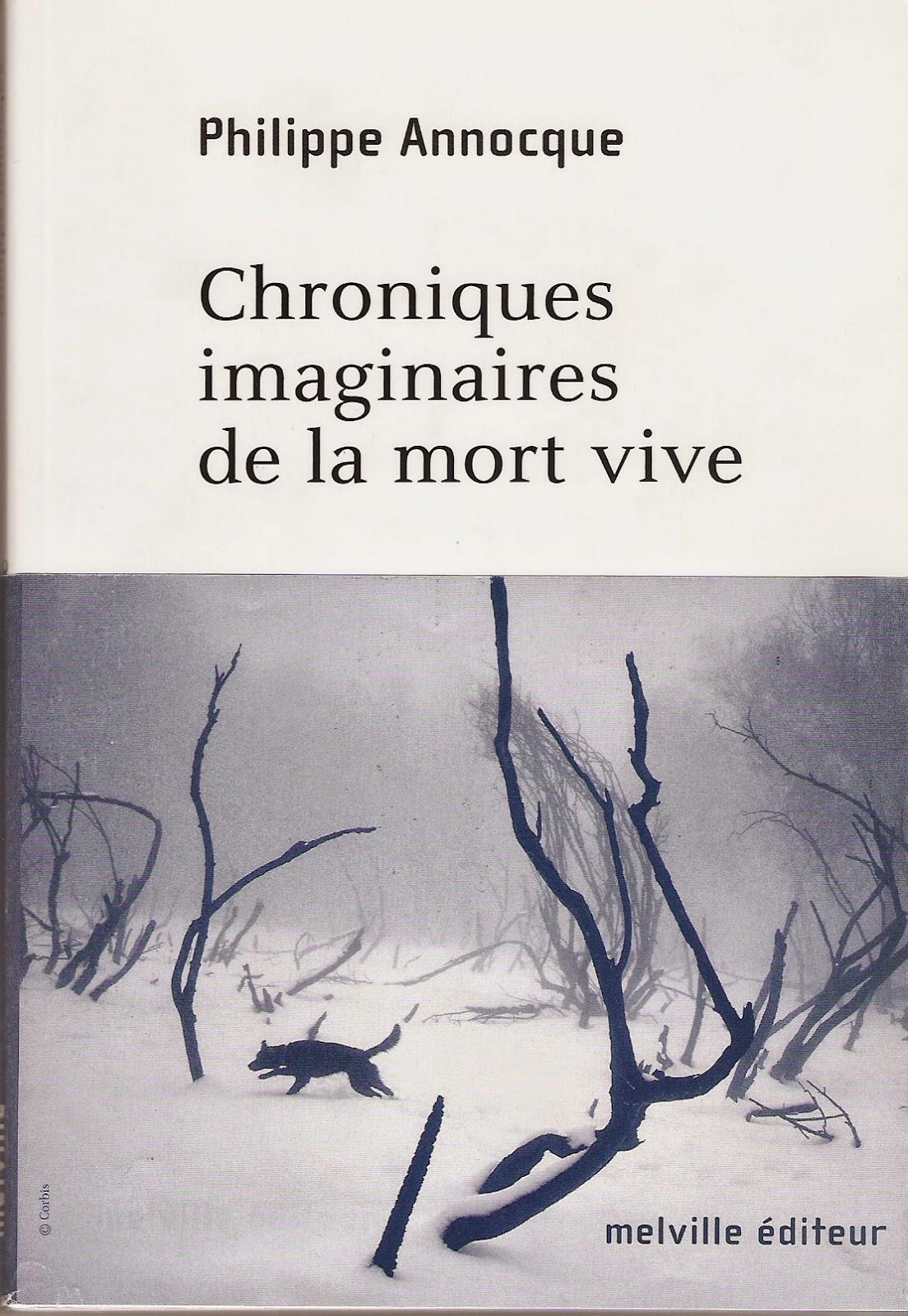 http://hublots2.blogspot.fr/p/chroniques-imaginaires-de-la-mort-vive.html