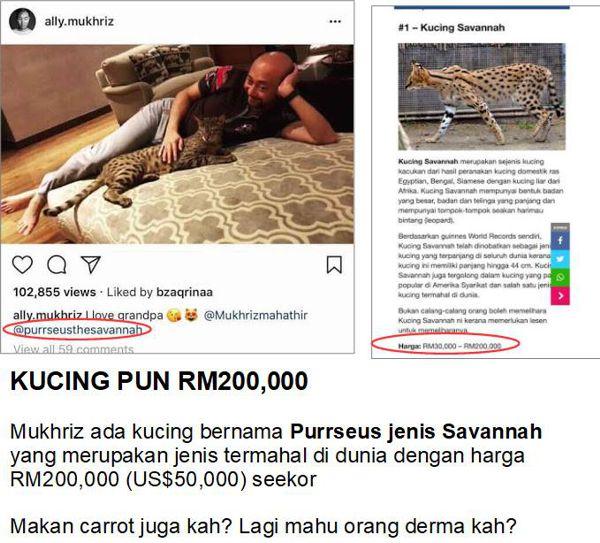 Kucing pun harga RM200,000