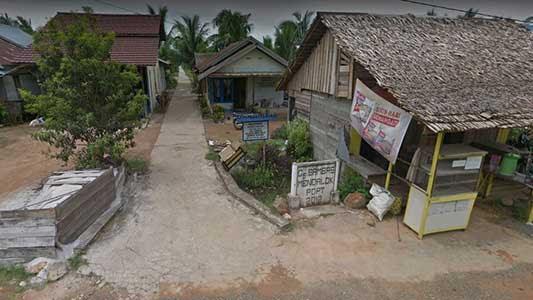 jalan menuju mangrove polaria mendalok