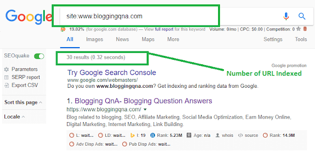How to check Indexed URL of site